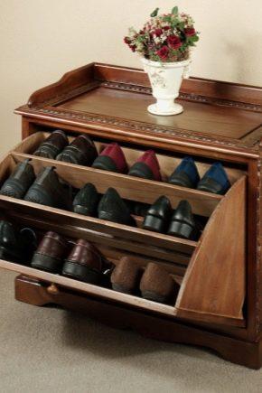 8cfe29f48d Ράφια για παπούτσια στο διάδρομο